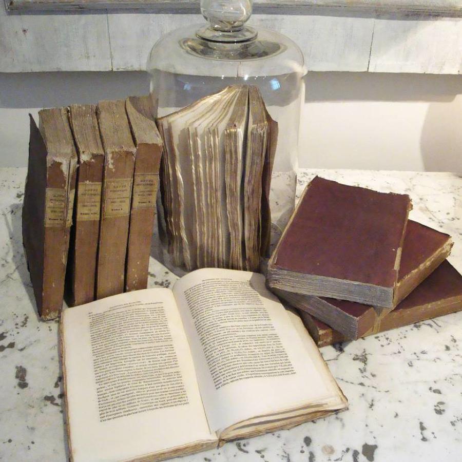Set of 9 19th century French Purple Books