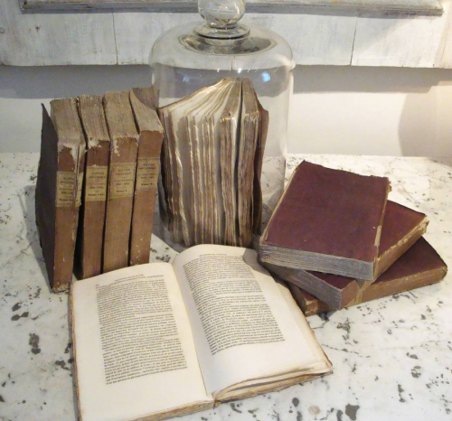 Set of 9 19th century French Purple Books