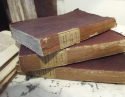 Set of 9 19th century French Purple Books - picture 3