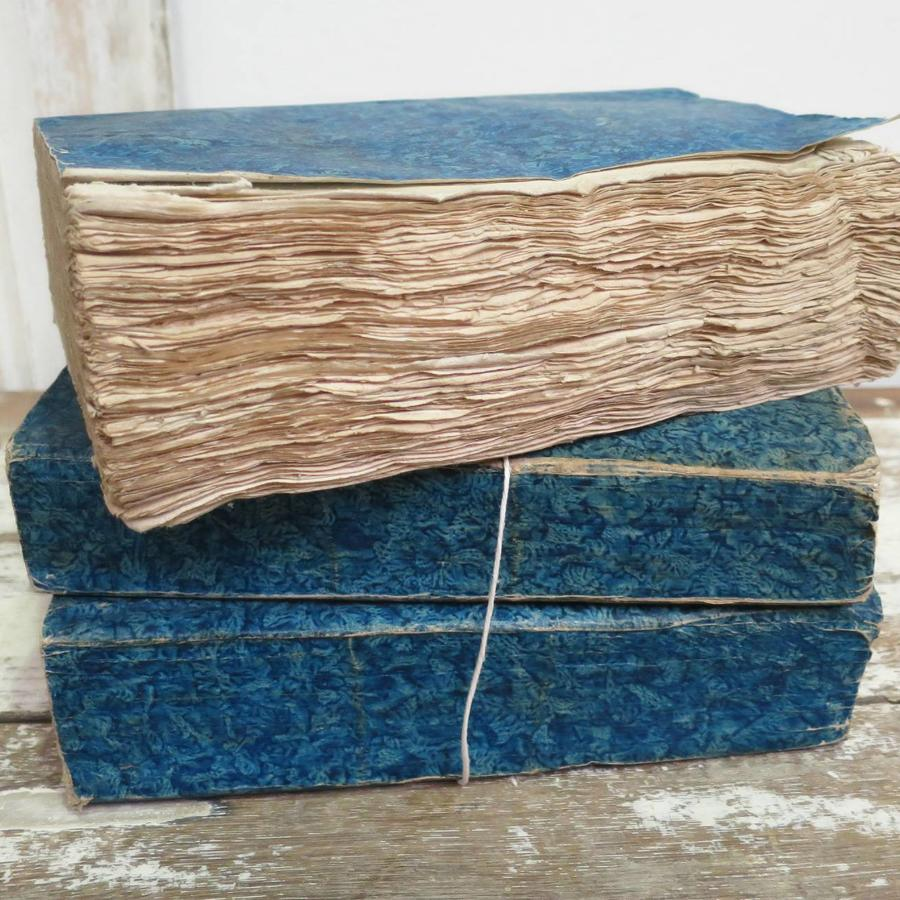 Set of 3 thick French 19th c Blue Books