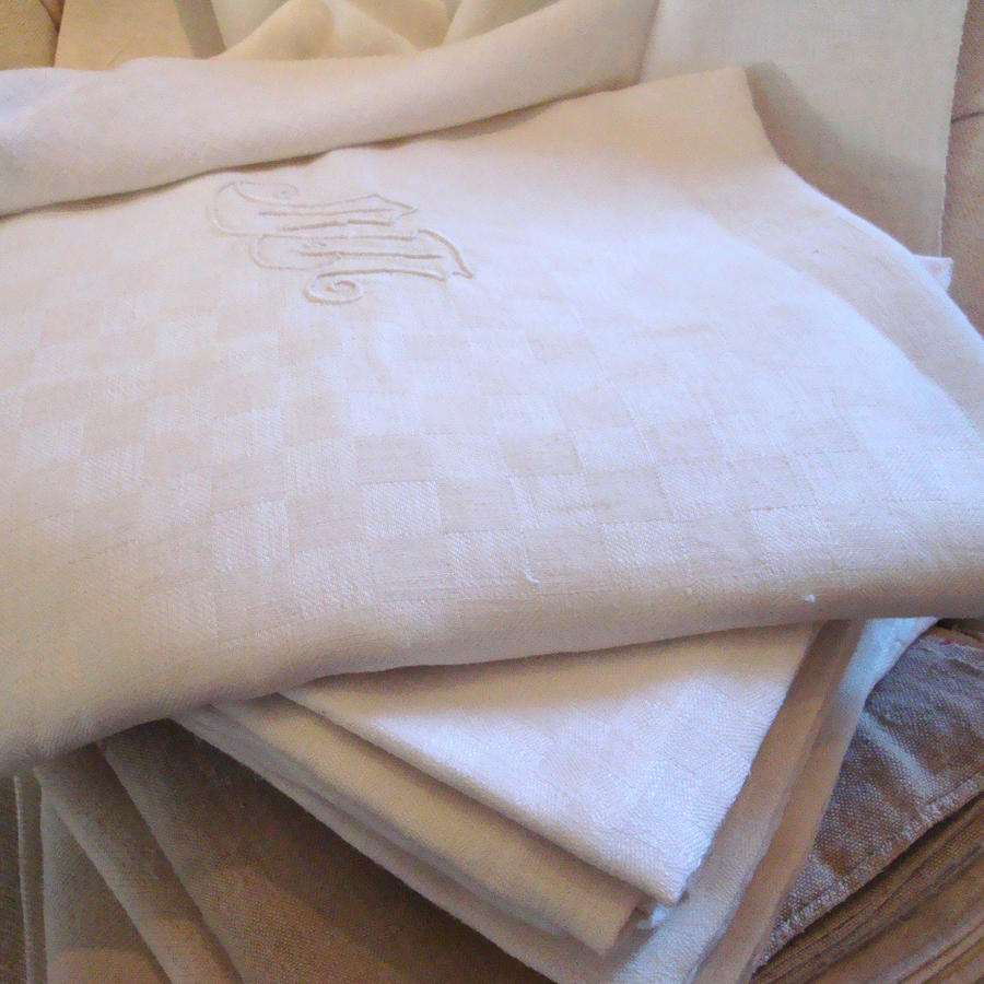 French Tablecloth and Set of 10 Napkins