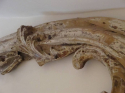 18th Century Italian Carved Fragment - picture 4