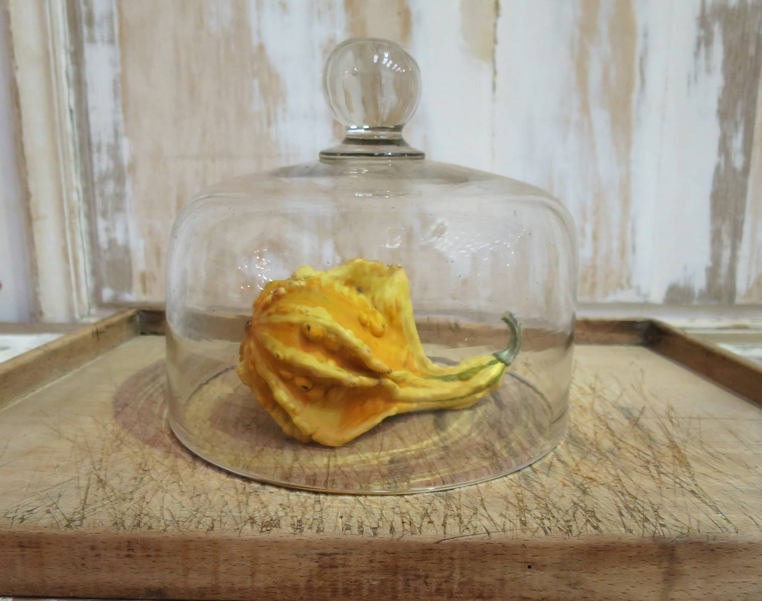 Large 19th c Glass Cheese Bell
