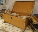 18th century French Wooden Trunk - picture 3