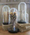 Collection of Glass Domes - picture 1