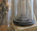 Collection of Glass Domes - picture 7