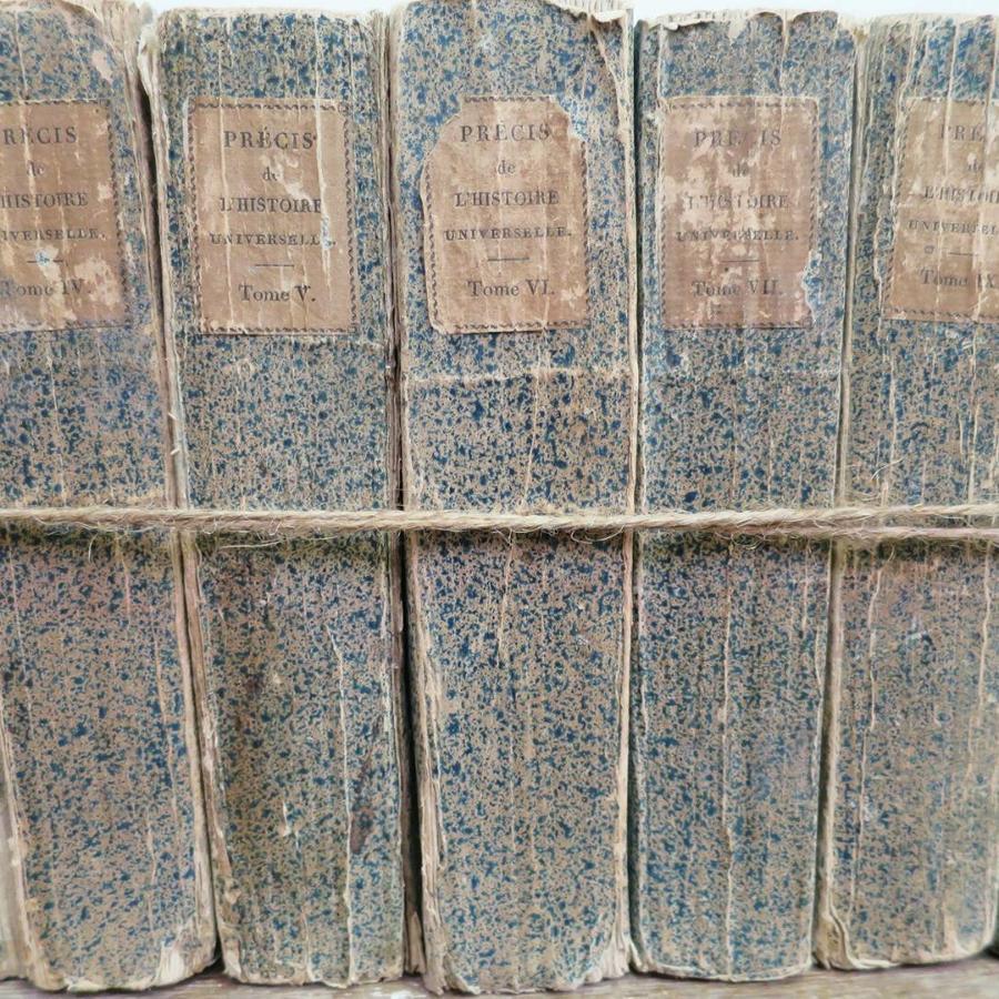 Set of 11 Blue 19th c `Splattered` Books
