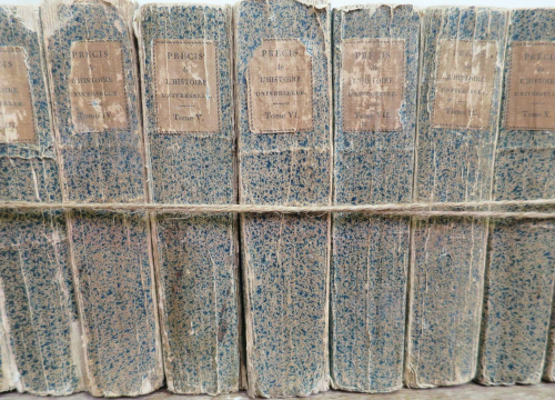 Set of 11 Blue 19th c `Splattered` Books