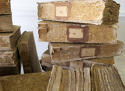Set of 31 French 19th century Sponged Books on Natural History - picture 3