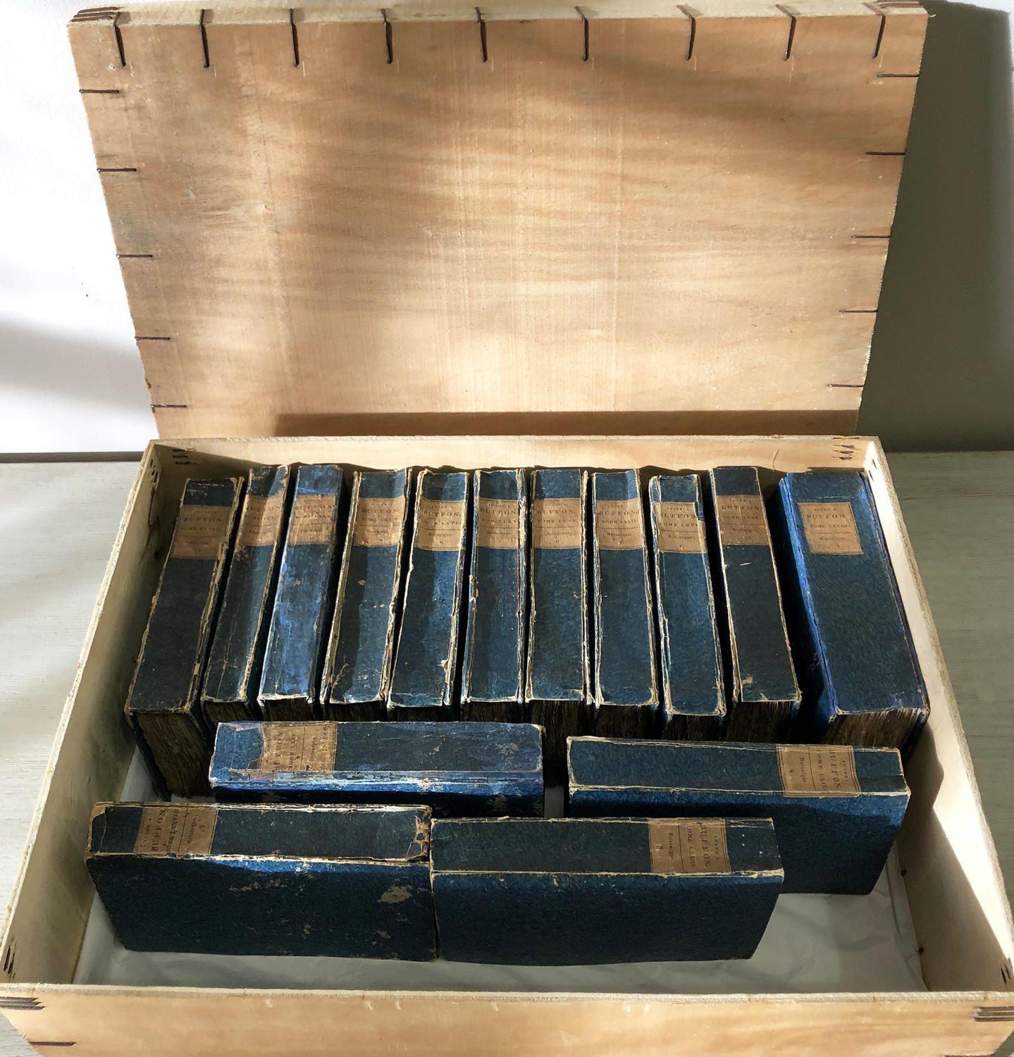 Set of 15 19th c French Blue Books by 'Buffon' in Box