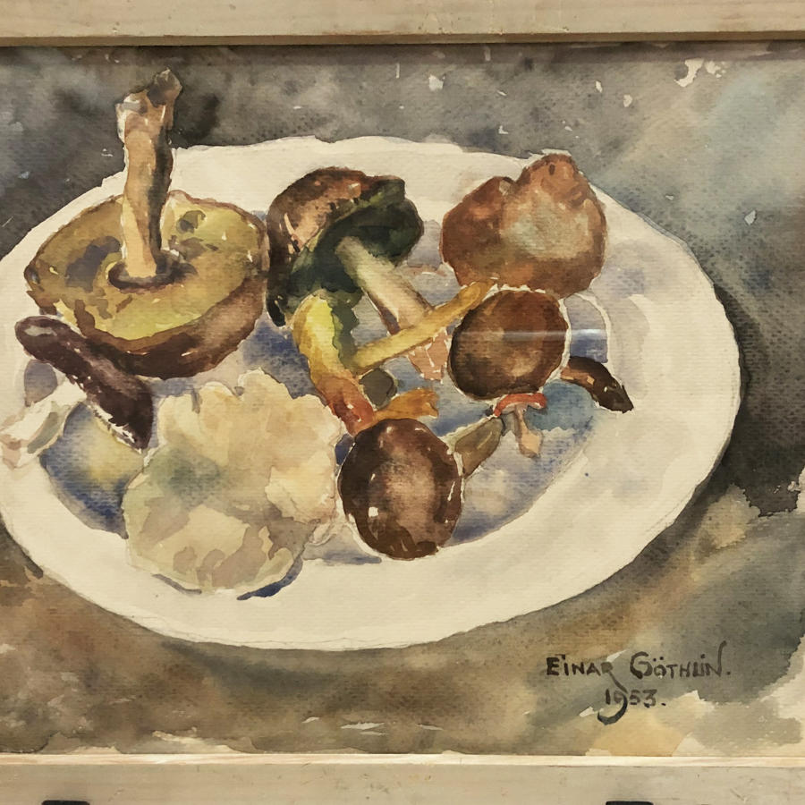Swedish 20th c watercolour of Mushrooms