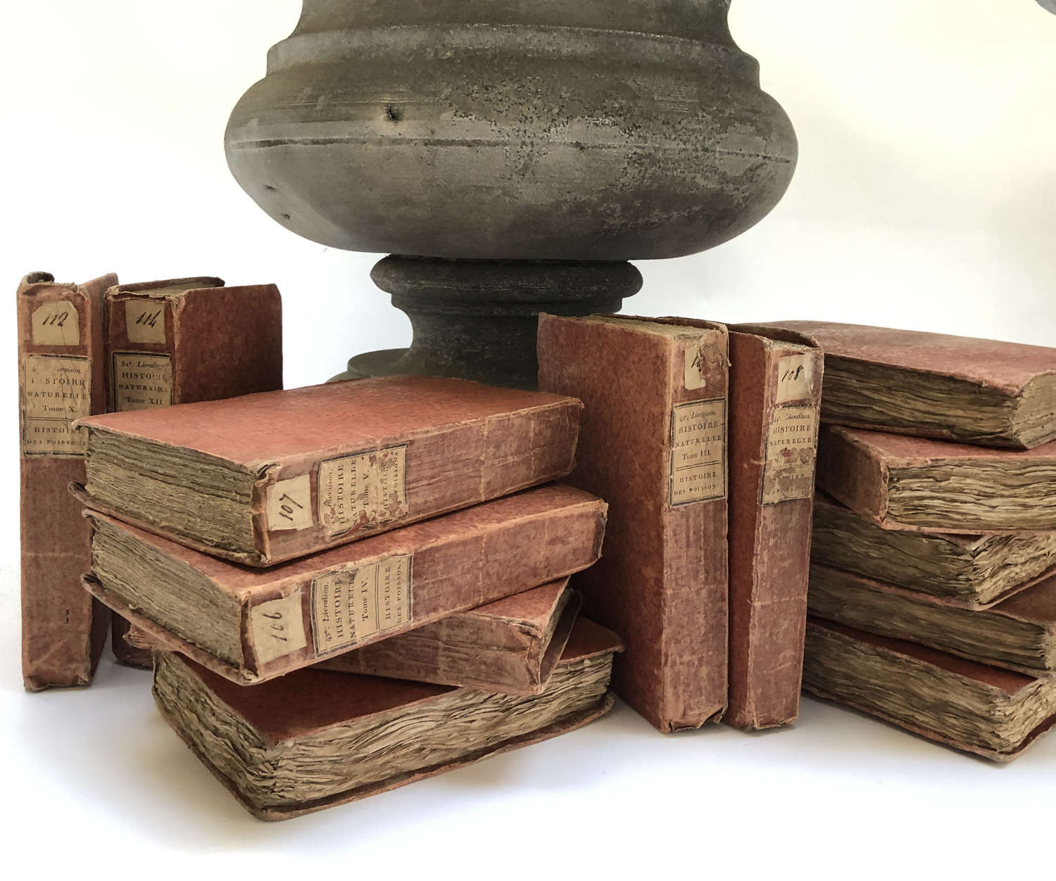 Set of 13 18th c French Books on Fish - Circa 1711