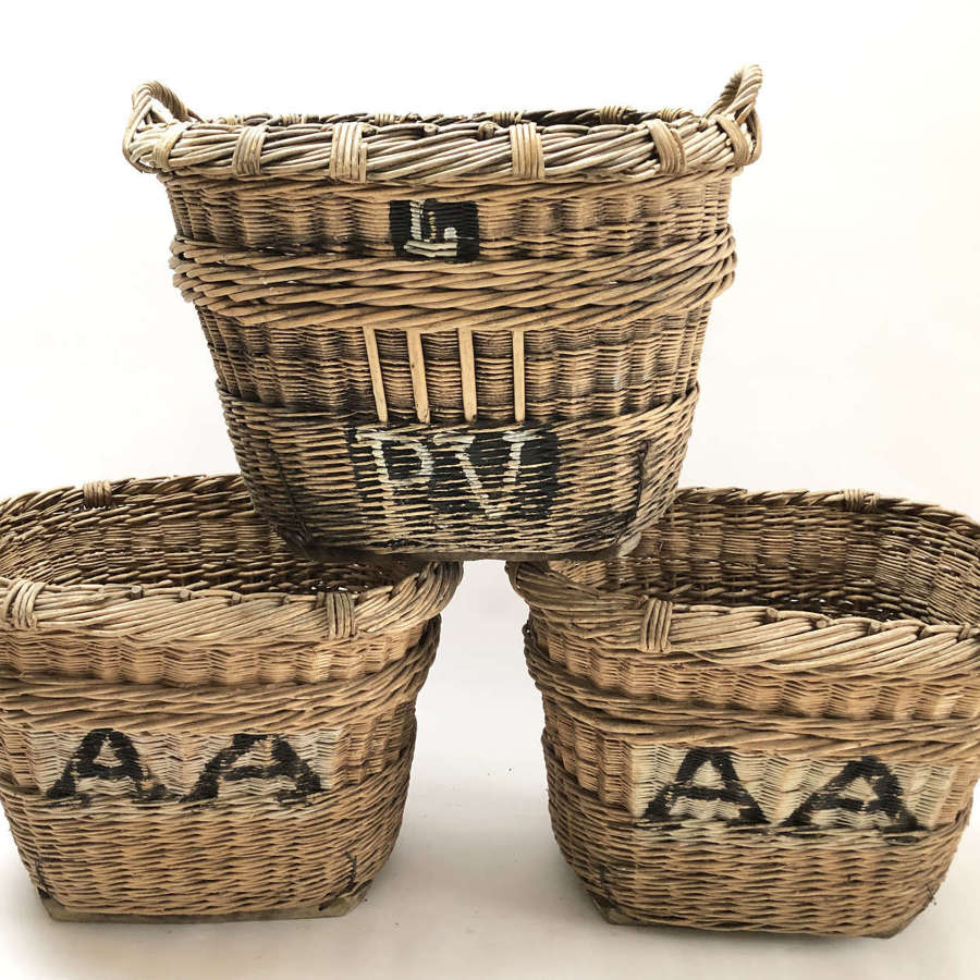 Large French Champagne Harvest Baskets - circa 1920